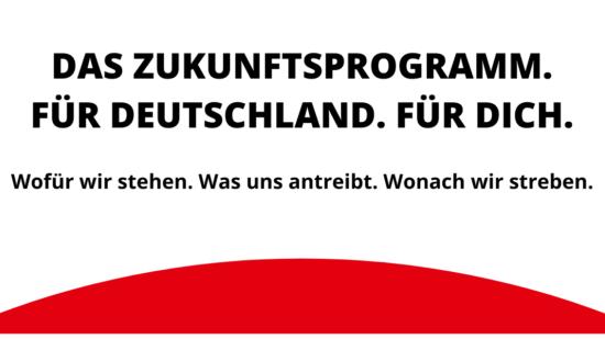Wahlprogramm zur Bundestagswahl 2021